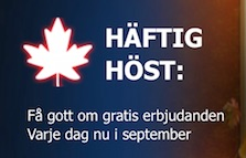Haftig host 10Bet